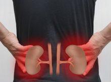 Doktor u kući: Kronične bolesti bubrega