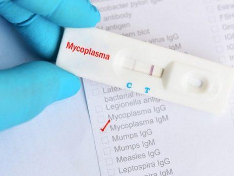 Spolne zaraze: Mikoplazma prijeti plodnosti